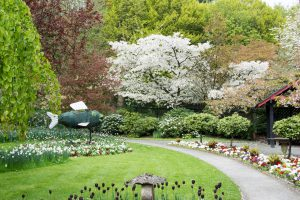 Gardens spring 2017-11